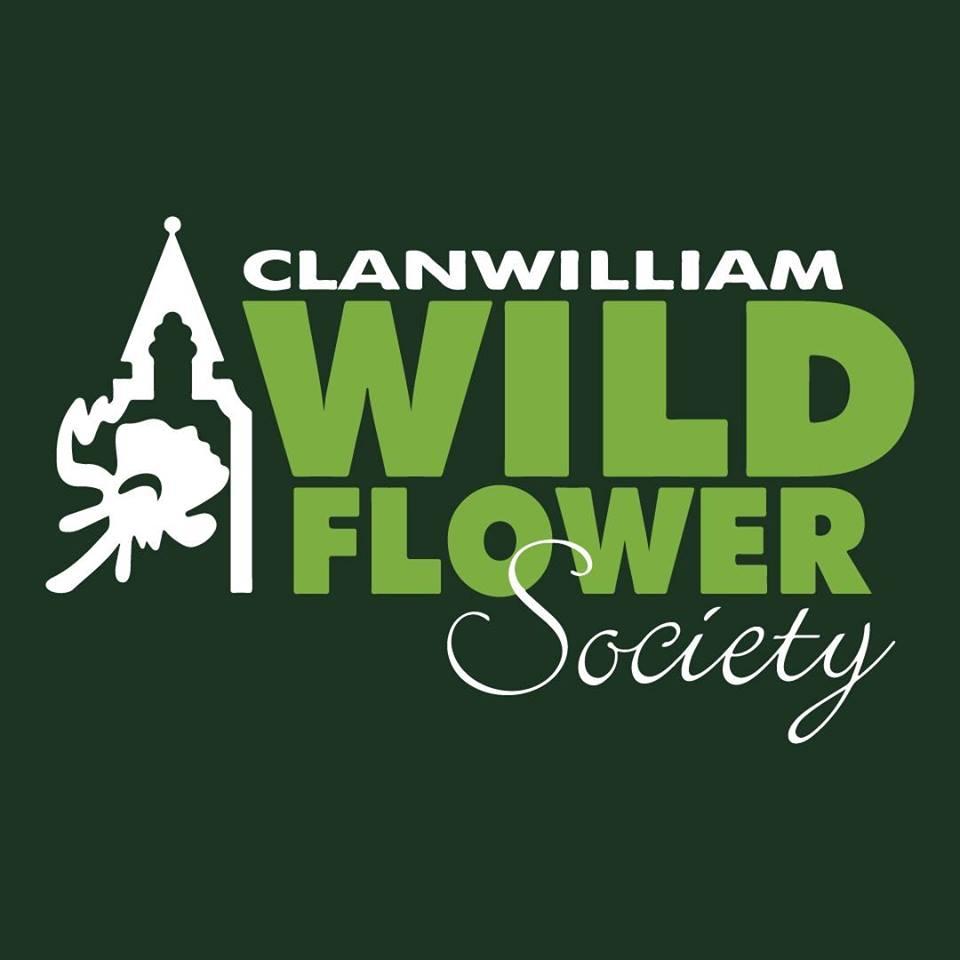 Clanwilliam-Wildflower-Show